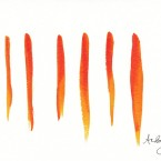 orange lines 2011
