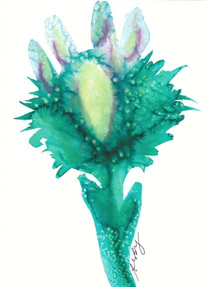 green flower 2012 salt market series_resized