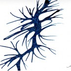 blue tree 2012 card ink series_resized